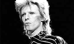 090731bowie
